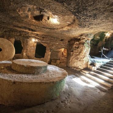 Gli antichi Romani e l'olio di oliva